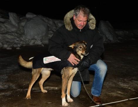 De Nero stiller med  Bufetat på sida under Finnmarksløpet. Foto: Ivar Sørnes