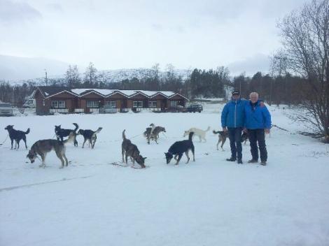 CAMPINGLIV: Dag Torulf og pappa Svein med hundene på campingplassen i Øvre Alta. Foto: Birger Altmann