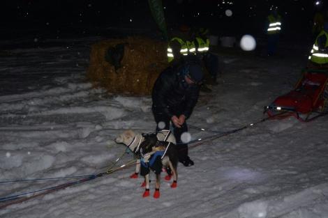 Hundene gjøres klar i natt før spannet fortsetter kjøringen. Foto: Ole Chr. Gulbrandsen