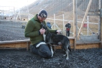 Frost trives på Svalbard, og har god plass i hundegården.