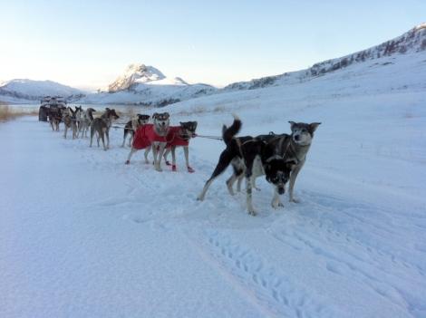 PÅ treningstur i Kvalsunddalen en flott oktoberdag.  Foto: Ingrid Skålid Amundsen