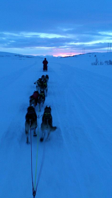 Ingrid kjører gjennom det blå landskapet, mens Tore følger hakk i hæl. Foto: Tore Amundsen