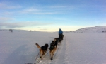 Og avsted. Foto: Ingrid Amundsen