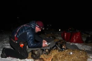 Hundene har fått halm å ligge på og et ullpledd over seg.  Foto: Eirik Palm