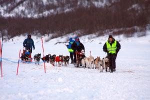 Dag Torulf kommer bare noen meter etter May-Conny Johansen. Turen til Levajok var ille, og hundekjøreren ble mørbanket. Foto: Eirik Palm