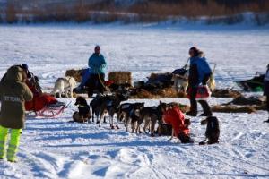 Spannet venter mens Dag Torulf henter posene med mat og drikke til neste etappe. Foto: Eirik Palm