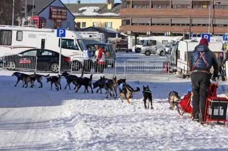Dag Torulf og spannet setter ut av Kirkenes tidlig tirsdag ettermiddag. Foto: Eirik Palm