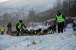 Dag Toruld kjørte ut fra Levajok 1 søndag klokka 13.31. Her ledes spannet ut fra innhengningen etter hvilen. Foto: Eirik Palm
