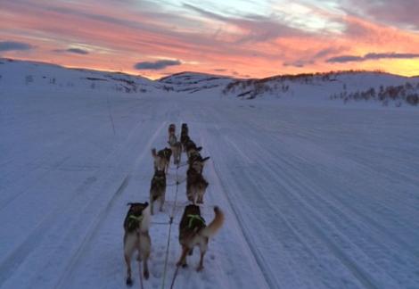 På vei over Finnmarksvidda.