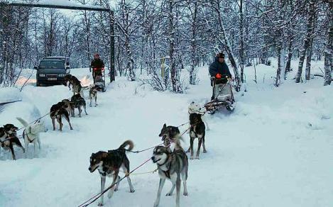 Treningstur i Kiruna. Foto: Hans Torulf Olsen