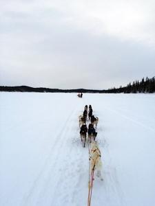 Treningstur i Kiruna før kjøring videre sørover. Foto: Karl-Erik Andersen
