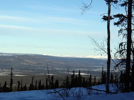 Treningsområdet. Til høyre på dem andre siden av dalen sees White Mountains. Foto: Karl-Erik Andersen